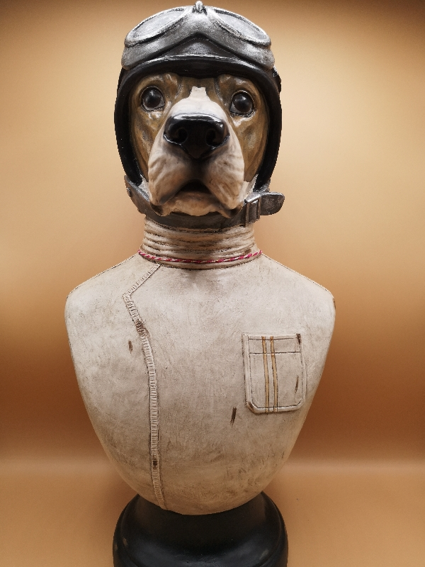 Dog in a Flying Helmet