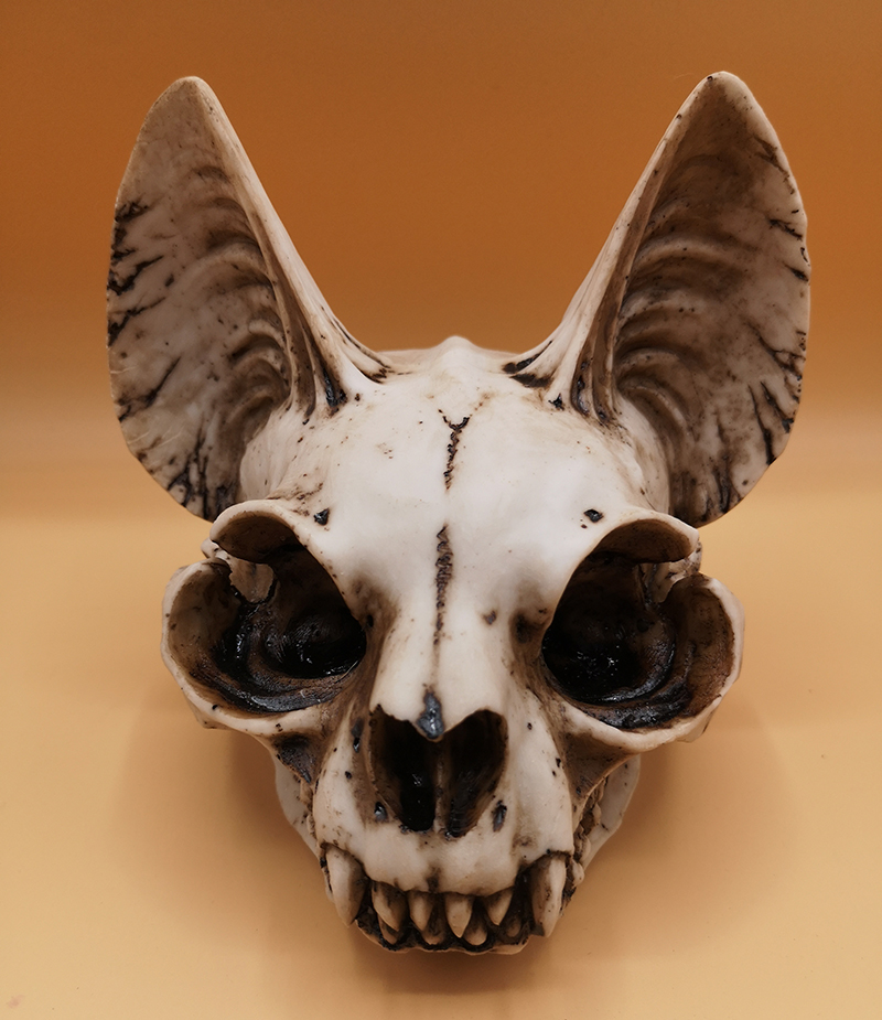 Mythical Cat Skull