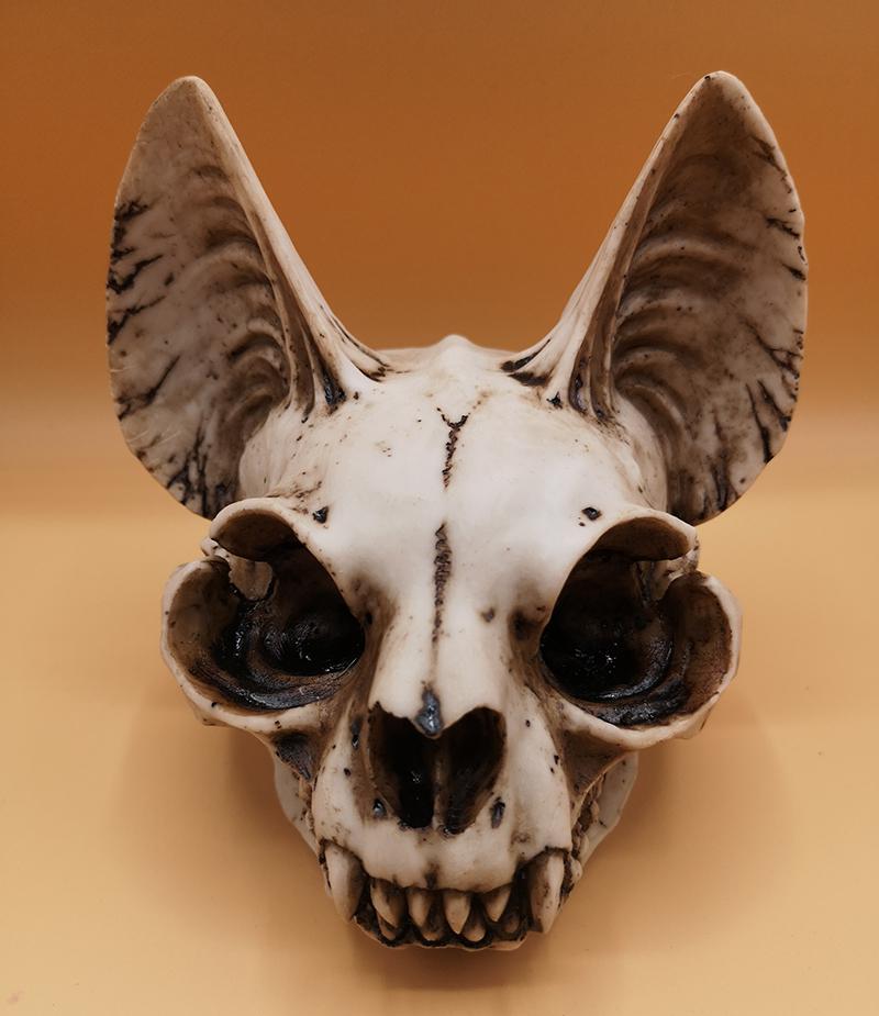 Mythical Cat Skull
